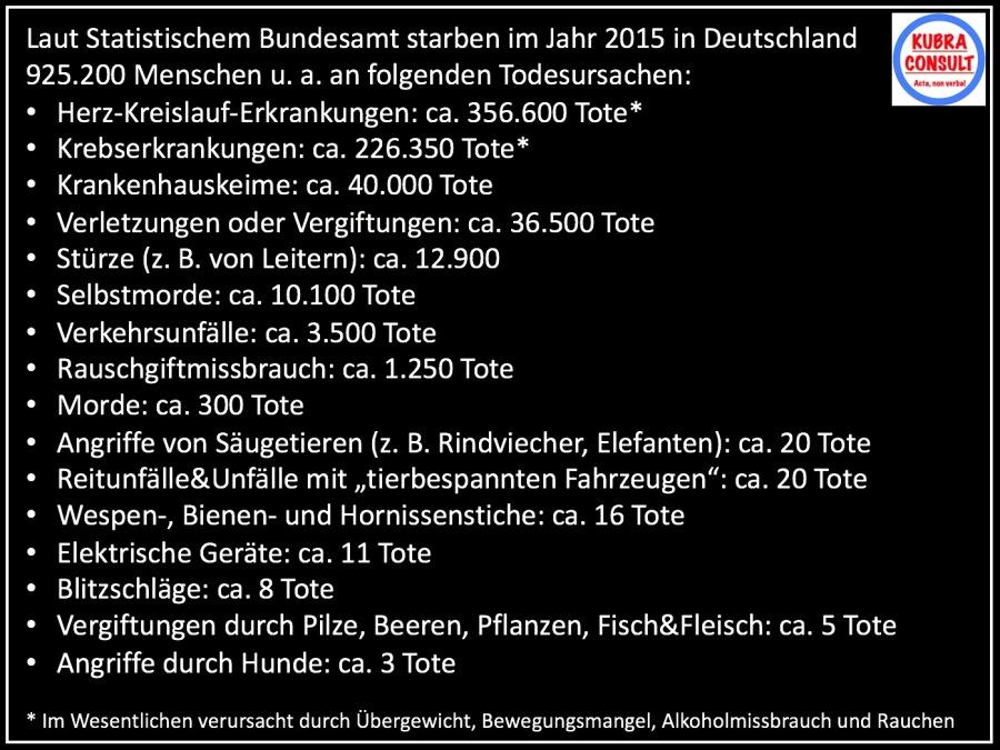 2017-06-18_KuBra Consult - Todesursachen in Deutschland 2015