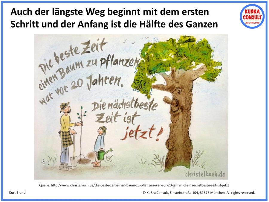 2018-08-24_KuBra Consult - Die beste Zeit, einen Baum zu pflanzen war vor 20 Jahren